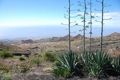 вулкан verde fogo кратера cabo Африки Стоковое фото RF