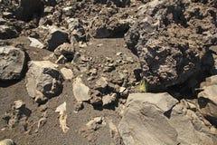 Вулканическая земля Стоковая Фотография