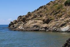 Вулканические породы стоковое фото rf