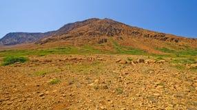 Вулканический ландшафт в глуши стоковая фотография
