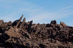 Вулканический ландшафт в Лансароте Стоковое Изображение