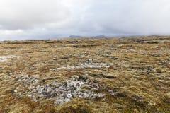 Вулканическое поле на полуострове Snaefellsnes Стоковые Изображения