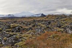 Вулканическое поле с Snæfellsjökul на bac Стоковые Изображения