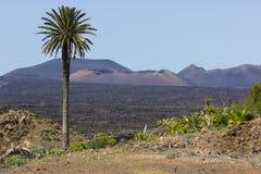 вулканическо Стоковое фото RF