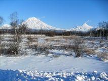 Вулканы Koryak и Avacha стоковое изображение