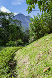 вулкан arenal Стоковое Изображение RF
