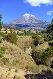 вулкан pico orizaba de Мексики стоковые фотографии rf