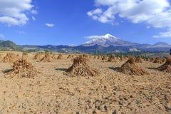 вулкан pico orizaba de Мексики стоковые изображения