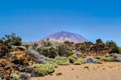 вулкан tenerife teide Стоковая Фотография RF