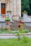 Вход дворца Стоковое Изображение RF