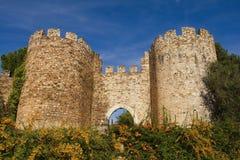 вход замока Стоковая Фотография RF