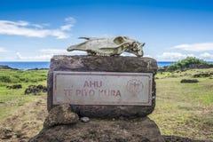 Вход к Ahu Te Pito Kura стоковые фото