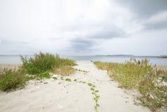 Вход пляжа Окинавы стоковое фото rf