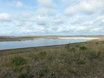 Вход среди болот Стоковое фото RF