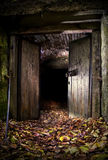 вход темноты подземелья Стоковые Изображения RF