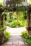 Вход к саду папоротника Стоковые Фотографии RF
