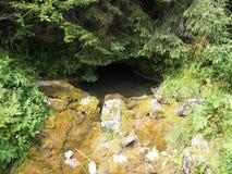 Вход пещеры Cetatile Ponorului в национальный заповедник Apuseni, Румынию Стоковые Изображения