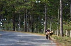 Въетнамская женщина с велосипедом на улице в Phan звенела, Вьетнам Стоковое Фото