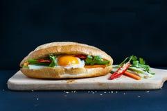 Въетнамский сандвич на предпосылке стоковые изображения