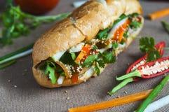 Въетнамский сандвич на предпосылке стоковое фото rf