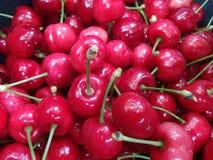 Выберите вверх красивые красные вишни стоковое фото