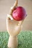 Выберите вверх яблоко стоковое фото
