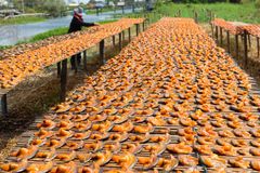 Выберите фокус высушенных посоленных рыб под солнцем во время fishi Стоковая Фотография RF