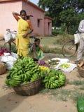 выбирает женщину saree плодоовощ индийскую Стоковая Фотография RF