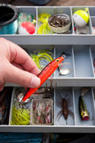 выбирать право прикормом рыболовства Стоковая Фотография RF