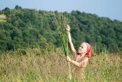 выбирать трав девушки Стоковая Фотография RF