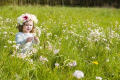 выбирать цветков Стоковое Изображение
