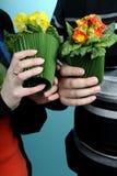 выбирающ семью цветет белизна Стоковая Фотография