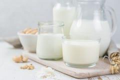 Выбор альтернатив молока не-молокозавода в различных бутылках Безлактозное молоко уклад жизни принципиальной схемы здоровый Стоковая Фотография