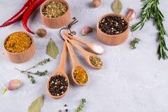 Выбор в деревянных ложках - розмариновое масло трав и специй, чеснок, соль, перец на серой таблице Положение квартиры еды Стоковые Фотографии RF