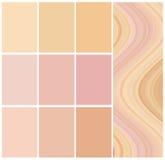Выбор диаграммы цвета Стоковое Фото
