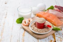 Выбор источников протеина животного происхождения с протеином порошка Стоковые Изображения RF