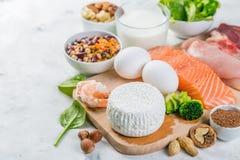 Выбор на источниках вегетарианца и протеина животного происхождения Стоковая Фотография RF
