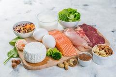 Выбор на источниках вегетарианца и протеина животного происхождения Стоковое Изображение RF