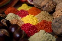Выбор различных красочных специй на деревянном столе Стоковая Фотография