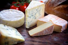 Выбор сыра Стоковая Фотография