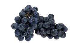 выбранные виноградины согласия свежие Стоковая Фотография RF