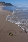 Выбытый на пляже Стоковые Изображения RF