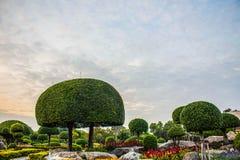 Вывесите сад карлика Стоковая Фотография RF