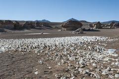 Выветренные геологохимические горные породы вокруг rbol de Piedra  Ã, пустыни Siloli, Боливии Стоковое Изображение RF