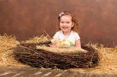 Выводок цыпленоков в гнезде Стоковые Изображения