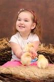 Выводок цыплят в гнезде Стоковые Изображения