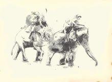 Выгравированный - ПОЛО слонов иллюстрация штока