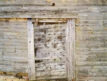 выдержанная древесина Стоковая Фотография