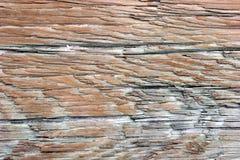 выдержанная древесина Стоковые Фотографии RF