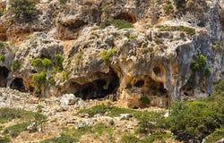 Выдержанная стена известняка с пещерами отказов стоковая фотография